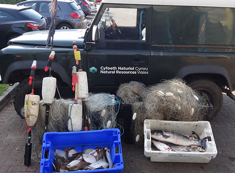 confiscated fishing gear, vehicle and fish