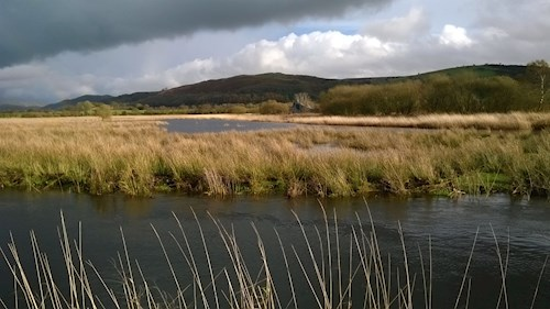 Cors Caron National Nature Reserve