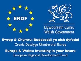 Europe & Wales: Investing in your future logo