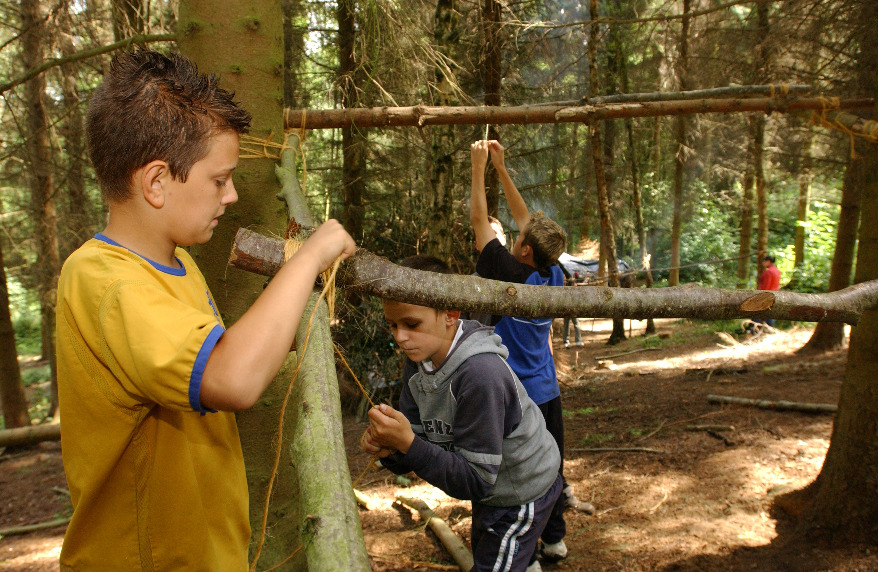 Children enjoying the woodlands