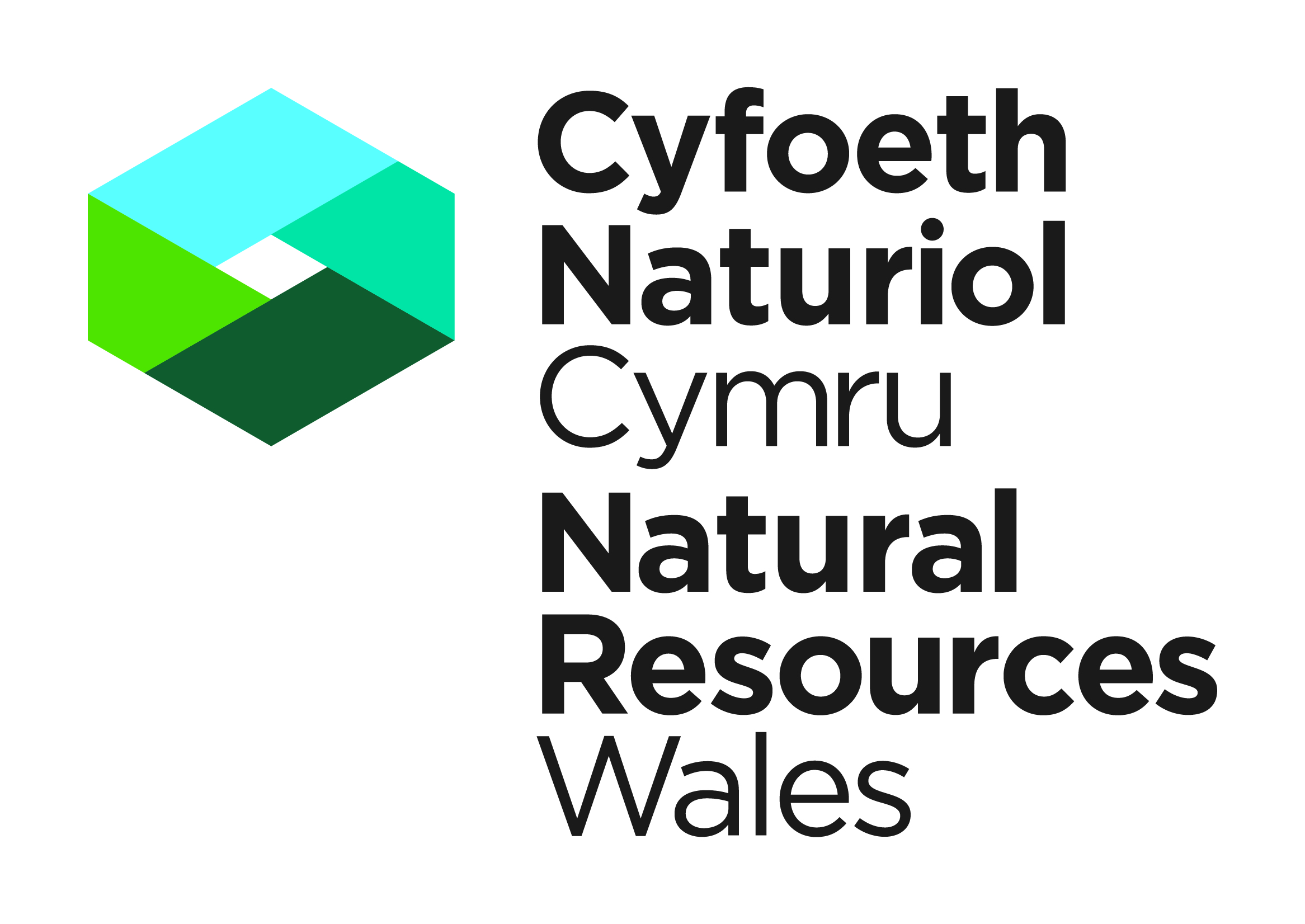 Natural resources wales long term flood risk natural resources wales logo buycottarizona