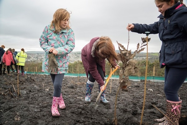 Children planting stakes to support tree saplings