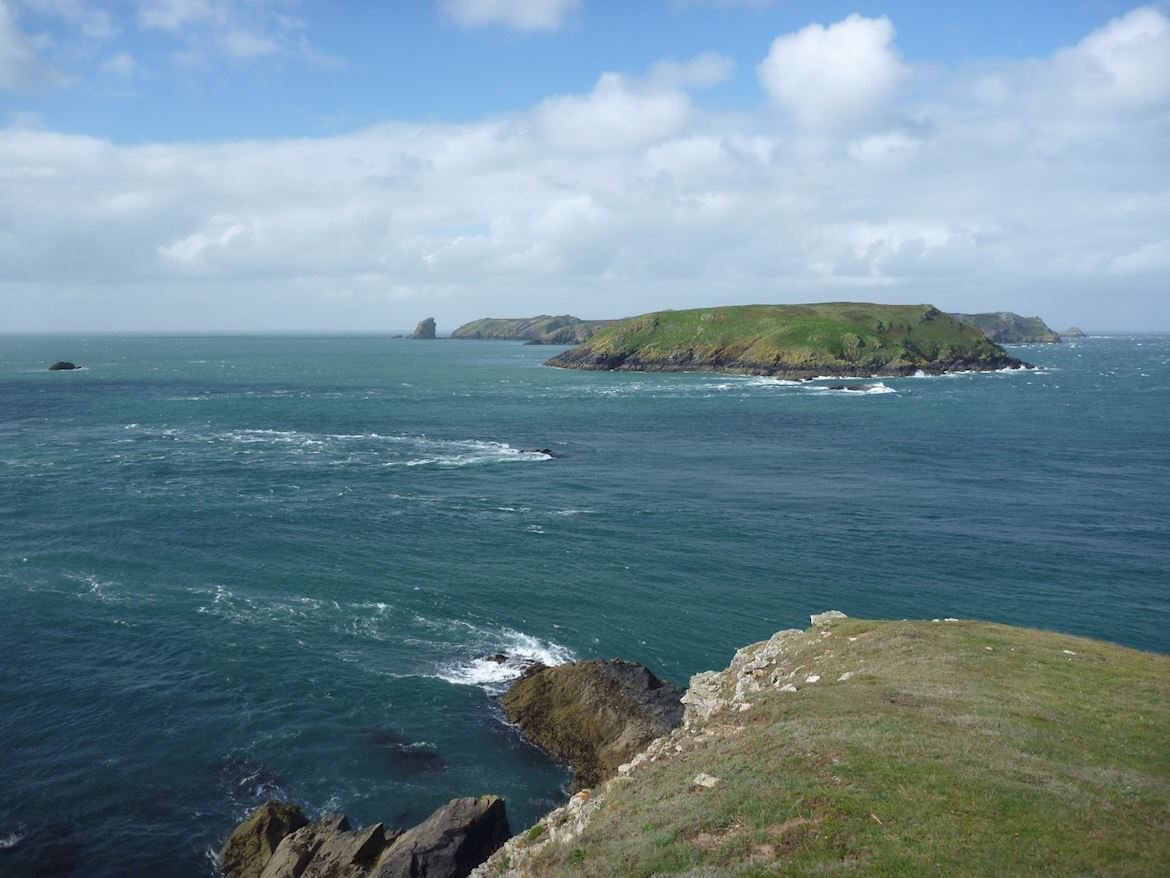 View of Skomer