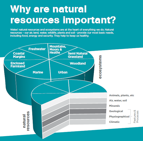 Natural Resources Wales Jobs