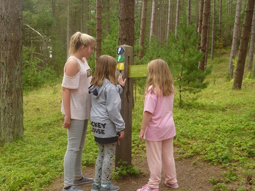 Three young girls on the animal puzzle trail
