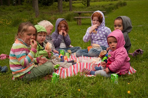 Children and picnic