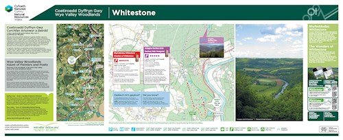 Whitestone - Wonders of Whitestone and Duchess Ride Viewpoint Trail panel