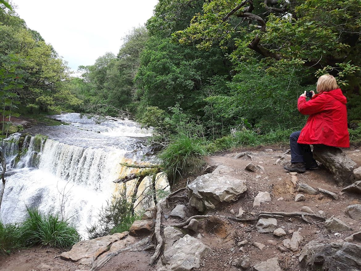 A person sitting on a banking taking a picture of a waterfall