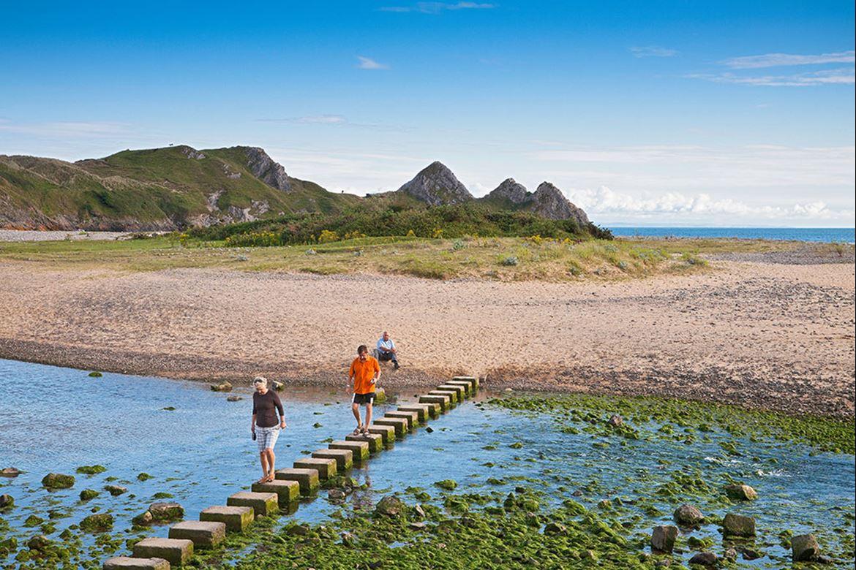 Dog Walking Routes Swansea