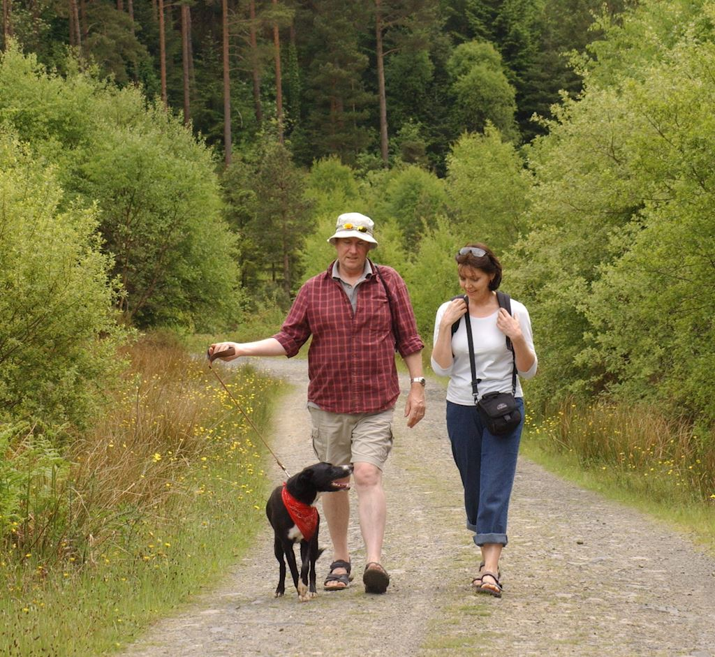 Couple walking in dog with forest