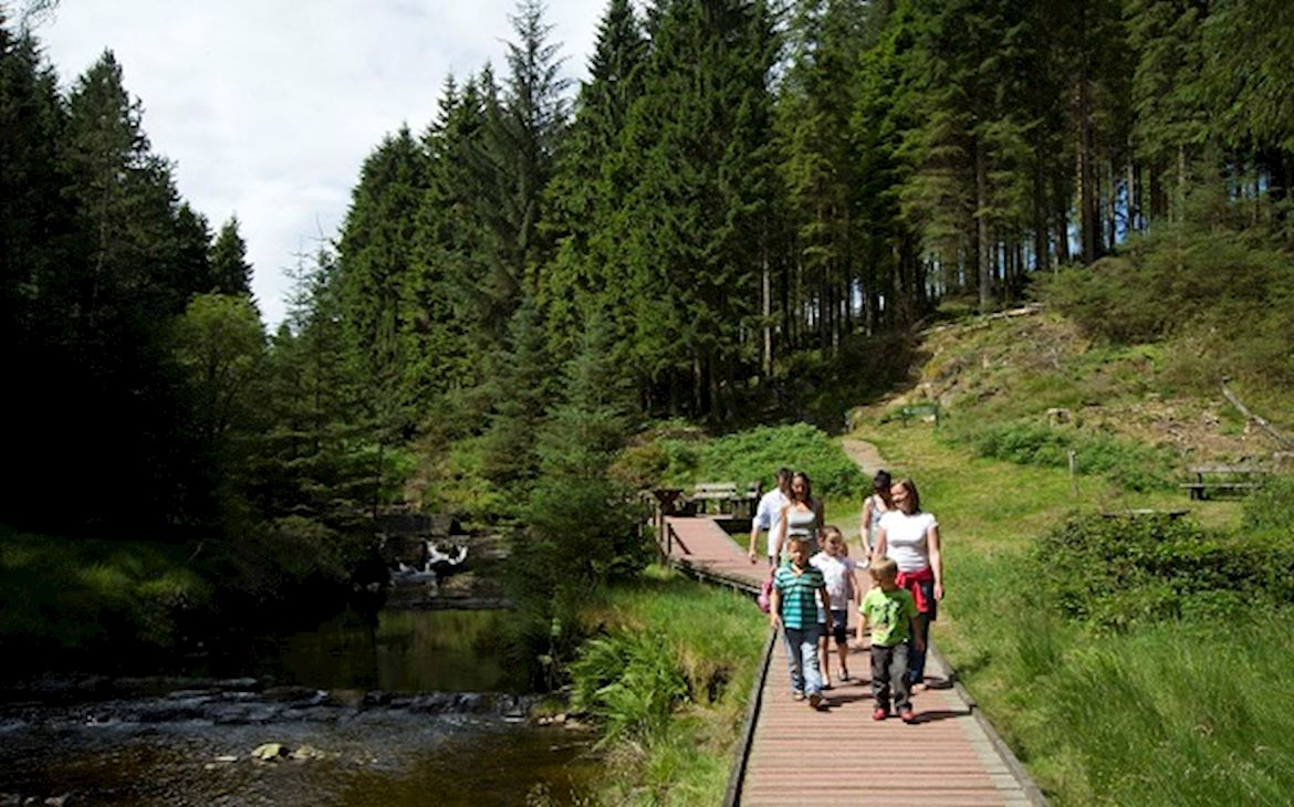 Family walking on boardwalk by forest